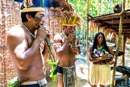 História e Sociedade Indígena no Brasil